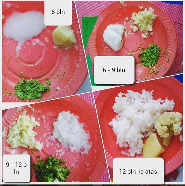 Resep Mp Asi Sederhana Tekstur Makanan Mp Asi