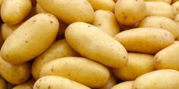 Rüyada patates görmek ne demek? rüyada patates kızartmak, soymak, patates yemek ne anlama gelir? rüyada patates satmak almak çuvalla taşımak.