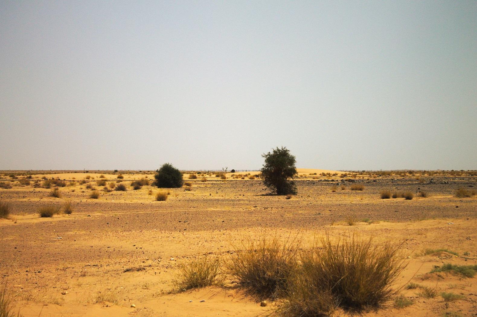Sahel | Zona Ecoclimática da África