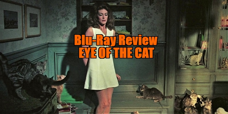 eye of the cat review