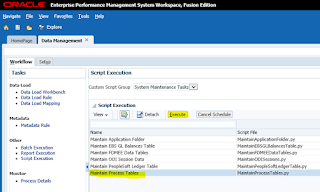 FDMEE: System Maintenance Tasks: Maintain Process Tables
