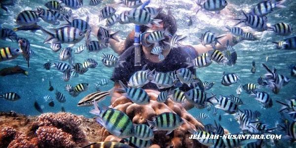 konsumsi wisata open trip pulau tidung