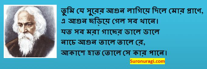 Tumi Je Surer Agun Lagiye Dile Lyrics (তুমি যে সুরের আগুন লাগিয়ে দিলে)