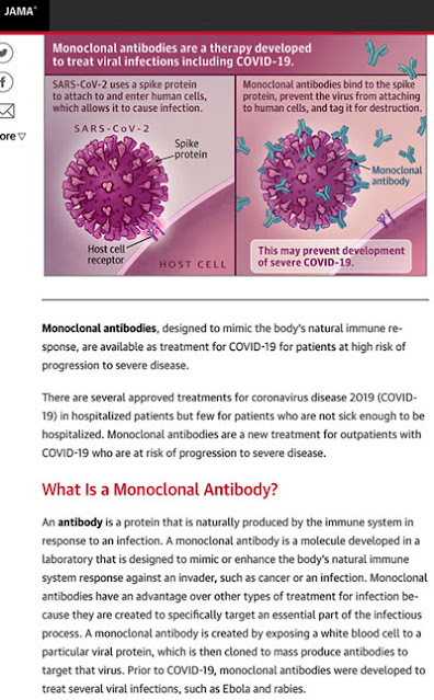 What is a monoclonal antibody? (Source: JAMAnetwork)