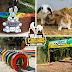 DESCONTO. 5 parques para curtir em família ECONOMIZANDO
