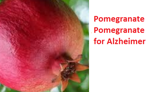 Health Benefits of Pomegranate Fruit (anar fruit) juice - Pomegranate Pomegranate for Alzheimer's