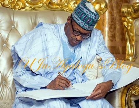 Buhari appoints ex-DSS DG Gadzama as NISS chairman