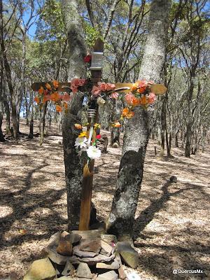 Una de las varias cruces que uno de puede encontrar en la Sierra de San Juan Cosalá