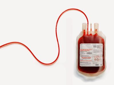 Makanan Untuk Tambah Darah