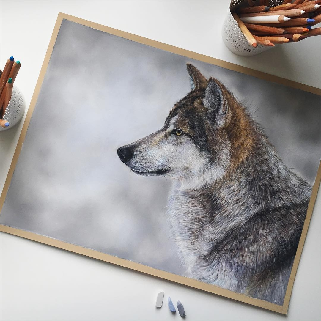 05-Wolf-Tatjana-Bril-Domestic-and-Wild-Animal-Drawings-www-designstack-co