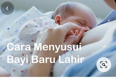 Cara Menyusui Bayi baru lahir dan Ketahui tahap perkembangannya