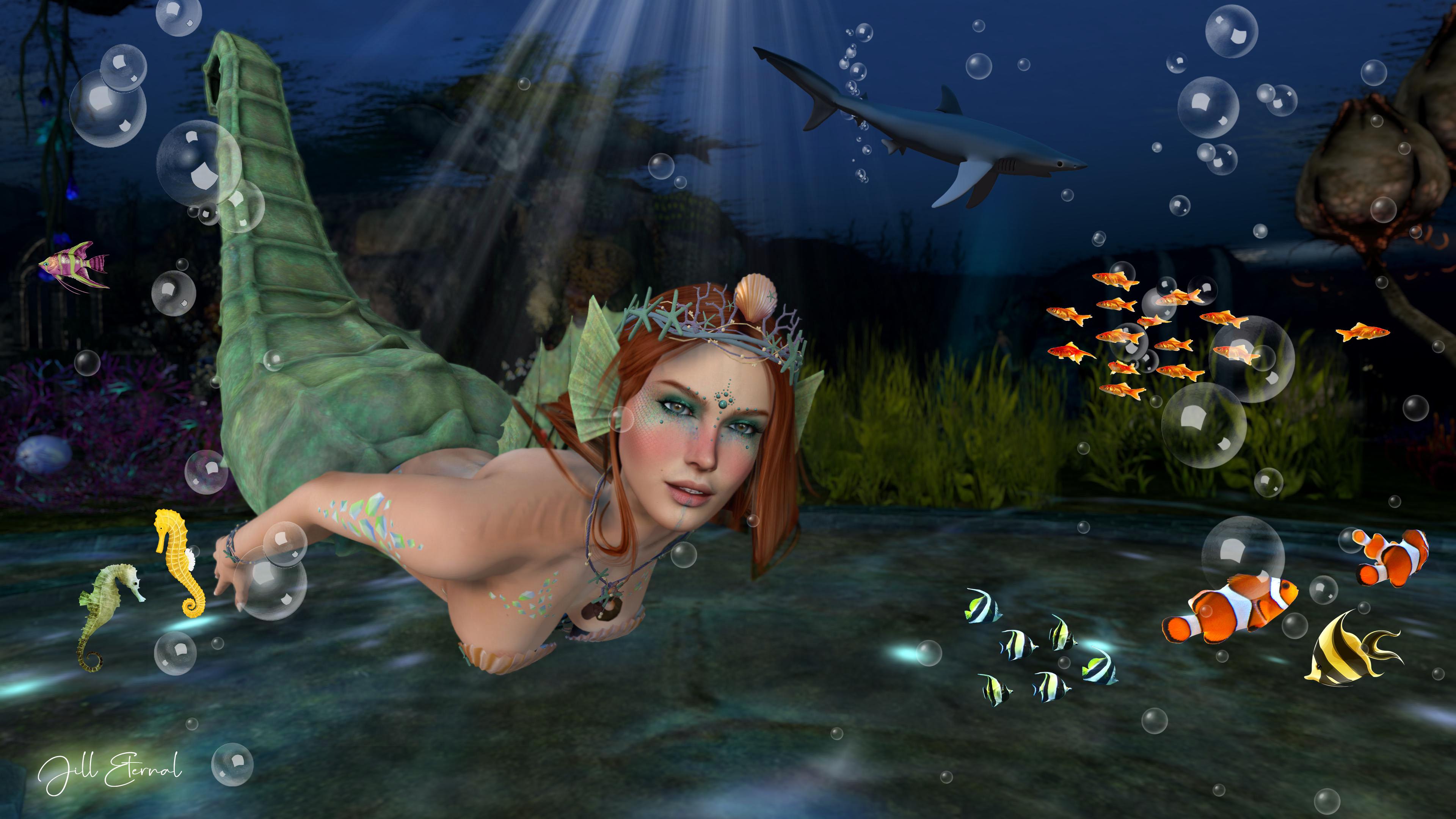*The Cove*  Mermaid Cove