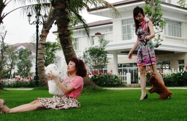 Khu biệt thự Vinhomes Riversie Hoa Lan có gì mới?