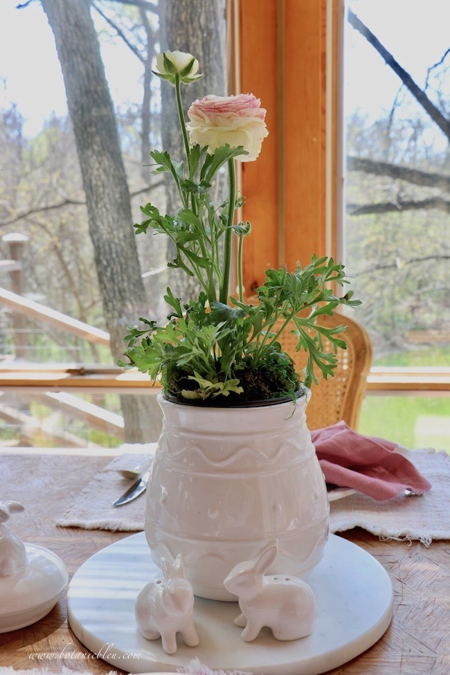Beautiful Spring Centerpiece with blooming bedding plant in a white Easter egg cookie jar