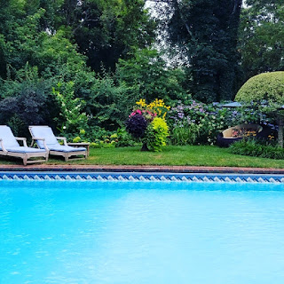 view of lush summer garden bed next to a sparkling pool
