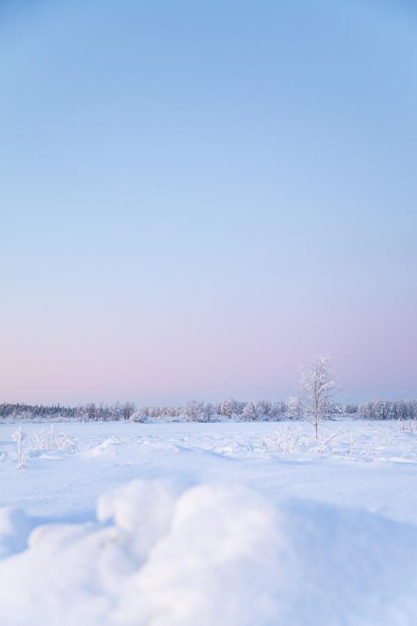 Talven ensimmäisenä kaamospäivänä taivas värjäytyi ihanan violetiksi