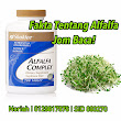 Facts About Alfalfa. Let's Read It!