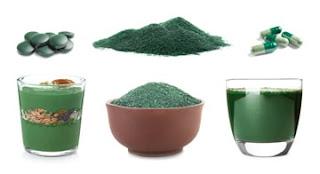 Alternative protein samples