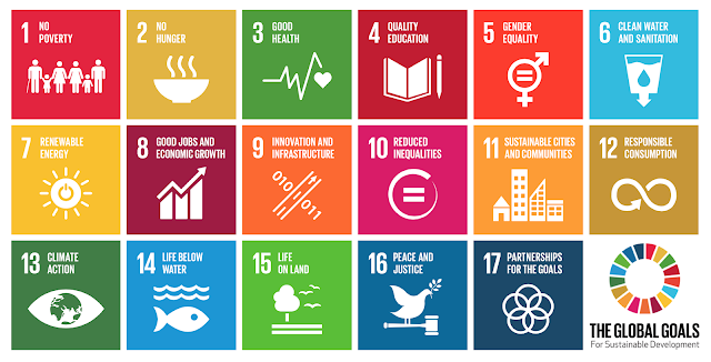 17 sustainable development goals for 2030