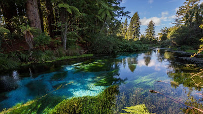 HD Wallpaper River, Trees, Shrubs, Lake, Sky, Clouds