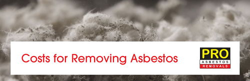 Image How Much Is Asbestos Removal Cost
