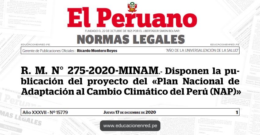 R. M. N° 275-2020-MINAM.- Disponen la publicación del proyecto del «Plan Nacional de Adaptación al Cambio Climático del Perú (NAP)»