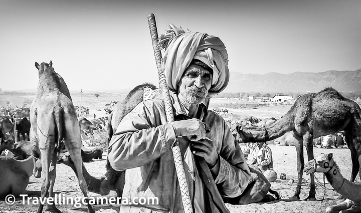 Pushkar Camel Fair is one of the most popular fairs(Melas) of Rajasthan state in India. It happens every year in the month of October.  Lot of folks from different parts of the globe come to Pushkar to experience a very different kind of festival where different kinds of trades happen, along with various cultural activities. This festival has been quite popular amongst the Photography community. Lot of Photography enthusiasts move towards Pushkar during this festival.    Pushkar Camel Fair is a great opportunity for Photography enthusiasts to shoot different kinds of subjects/experiences and learn through challenging situations this Fair offers. Camel Trading, Horse dance, races, Foreigner's Bridal competition, Dance competitions and lot of interesting events happen throughout the week.