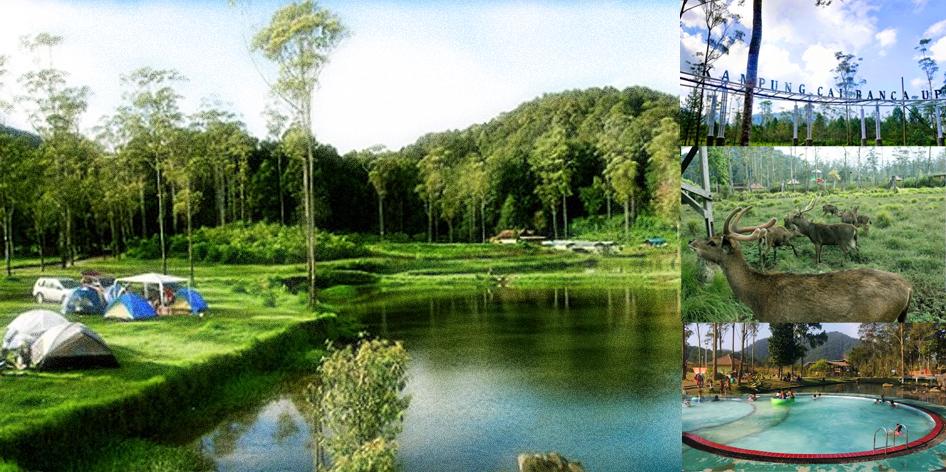 Kampung Cai Rancaupas Ciwidey