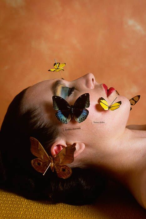 Alva Bernadine: The Butterfly Collector - Butterflies on Her Face