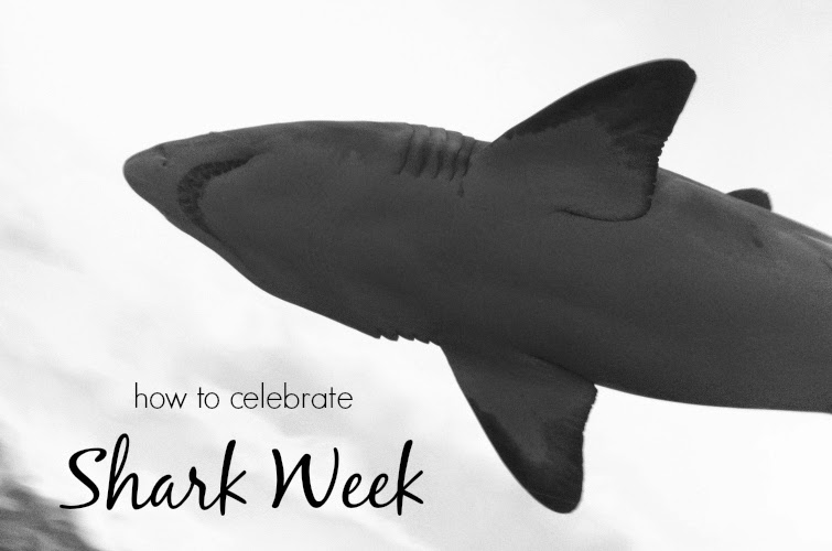 how to celebrate shark week