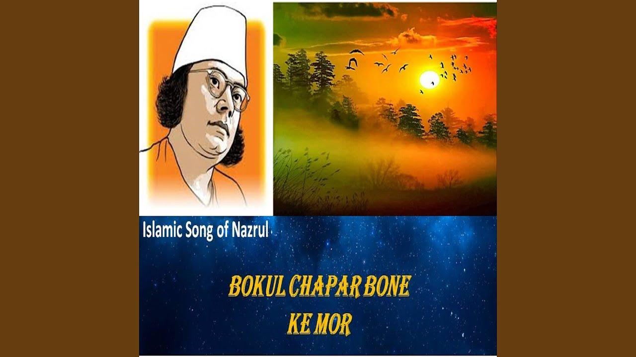 Bokul Chapar Bone Ke Mor Lyrics ( বকুল চাঁপার বনে কে মোর ) - Nazrul Geeti