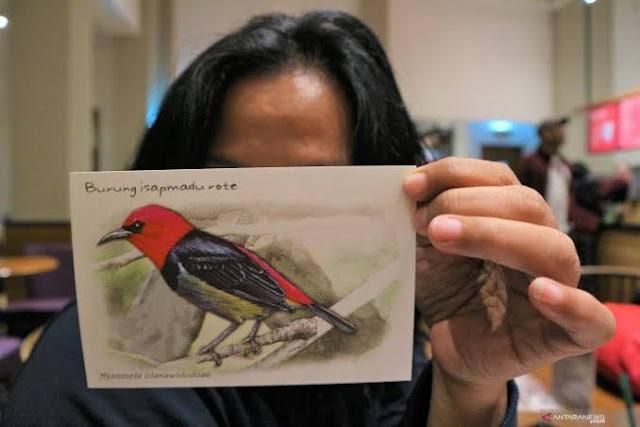 Pemeran Kehati kenalkan spesies burung langka asal Rote