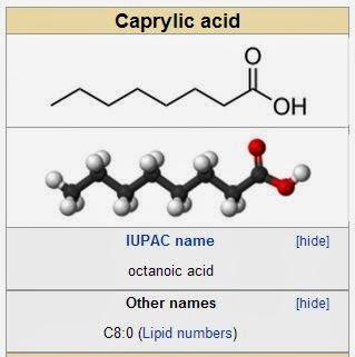 Medicine Newbie: Fatty Acids