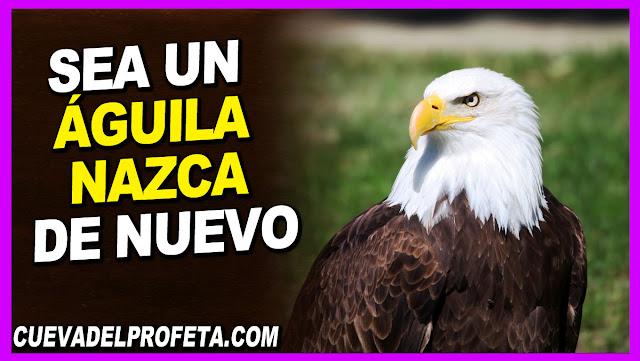 Sea un águila nazca de nuevo - William Marrion Branham en Español
