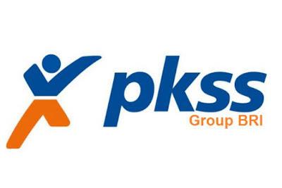 Lowongan PT. PKSS Pekanbaru September 2019