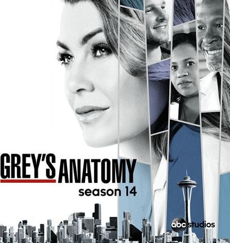 Anatomia de Grey Temporada 14