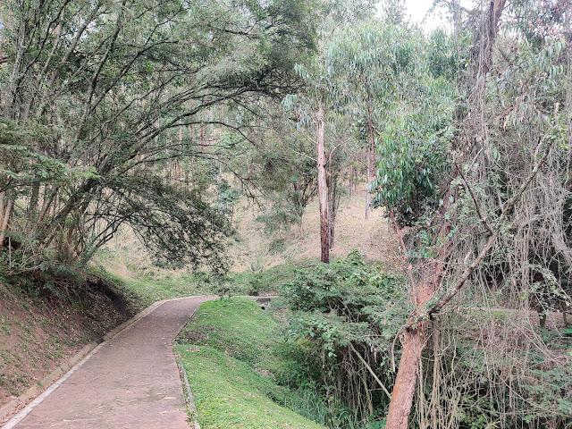 crazy travel experiences deserted park