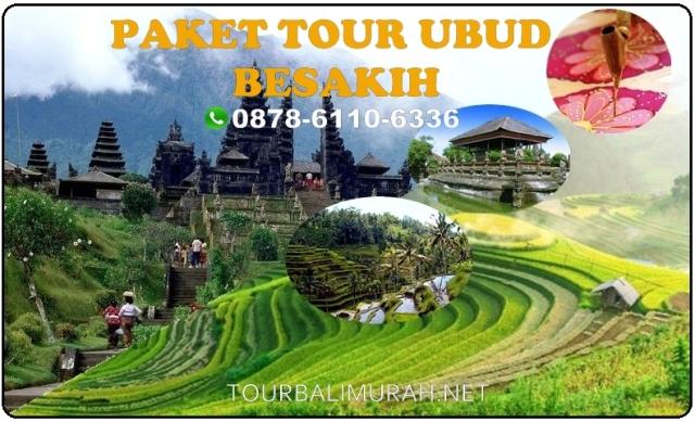 paket tour bali murah meriah, ubud besakih tour and travel