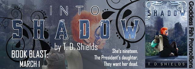 http://goddessfishpromotions.blogspot.com/2017/02/book-blast-into-shadow-by-td-shields.html