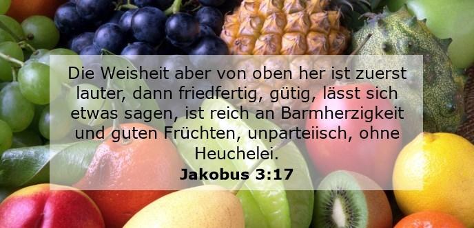 Die Weisheit aber von oben her ist zuerst lauter, dann friedfertig, gütig, lässt sich etwas sagen, ist reich an Barmherzigkeit und guten Früchten, unparteiisch, ohne Heuchelei.