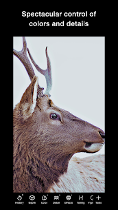 Polarr Photo Editor Pro Apk v5.10.17