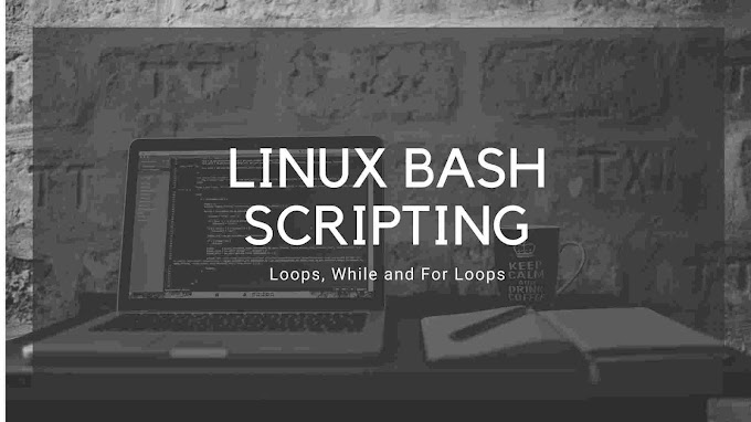How To Write Looping Statements In Bash