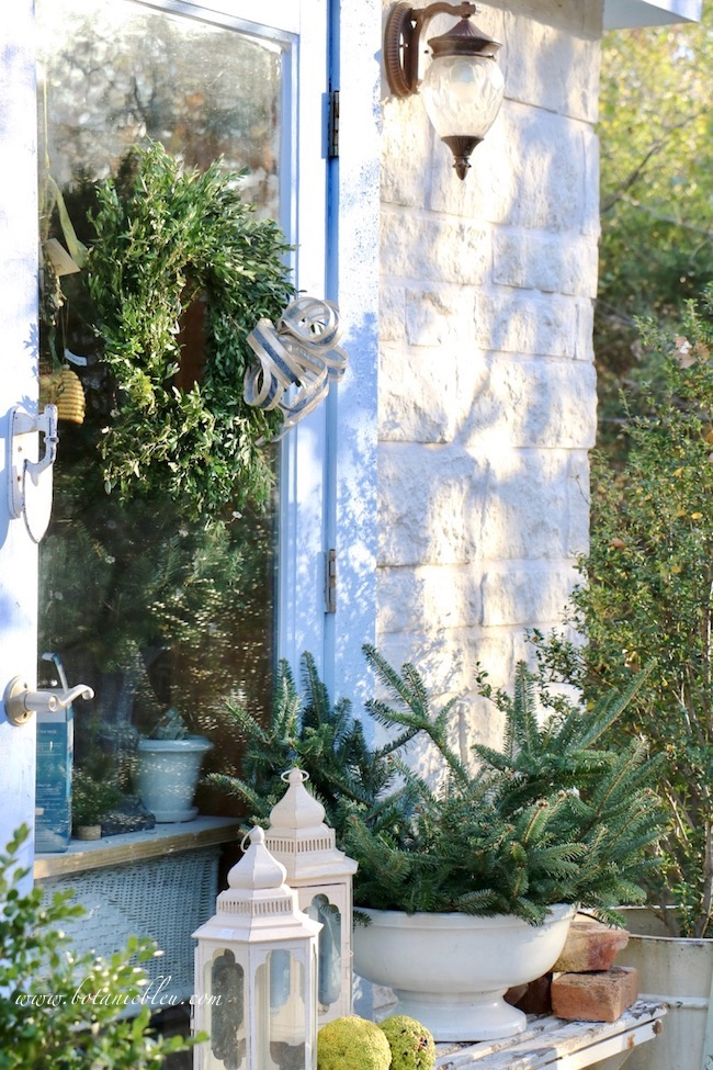 Dark fresh greens contrast with white native Texas limestone for a beautiful French Country Christmas garden shed exterior