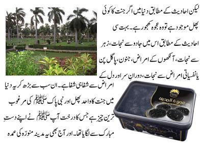 ajwa khajoor ke fawaid in urdu