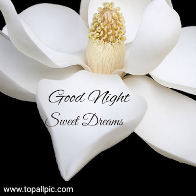 Good Night Sweet Dreams Images With Flower for her