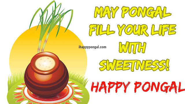 pongal pictures