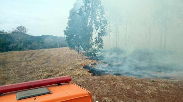 Mais um incêndio mobiliza bombeiros em Roncador