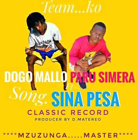 Download Audio   Dogo Mallo Ft Paru Simera – Sina Pesa (Singeli)