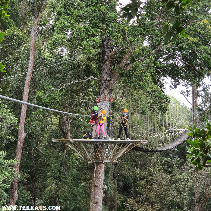 Zipline Activity Penang Best Thing To Do