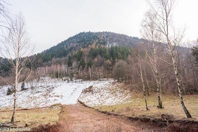 Przełęcz Kozia i Borowa widziane u podnóża Kozła
